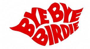 1986_birdie_logo