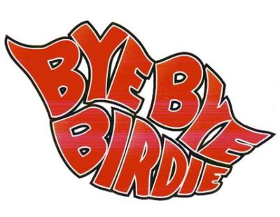 2009_birdie_logo